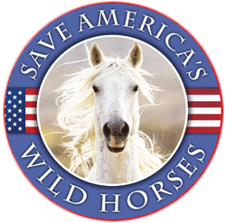 Save-Americas-Wild-Horses-Large
