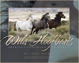 Wild-Hoofbeats-Book-Cover