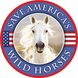 Save America's Wild Horses Button