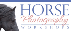 Horse Photography Workshops