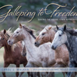 Wild Horses: Carol Walker on the Mustang Panel and Signing New Book at Equus Film Festival in NYC This Week