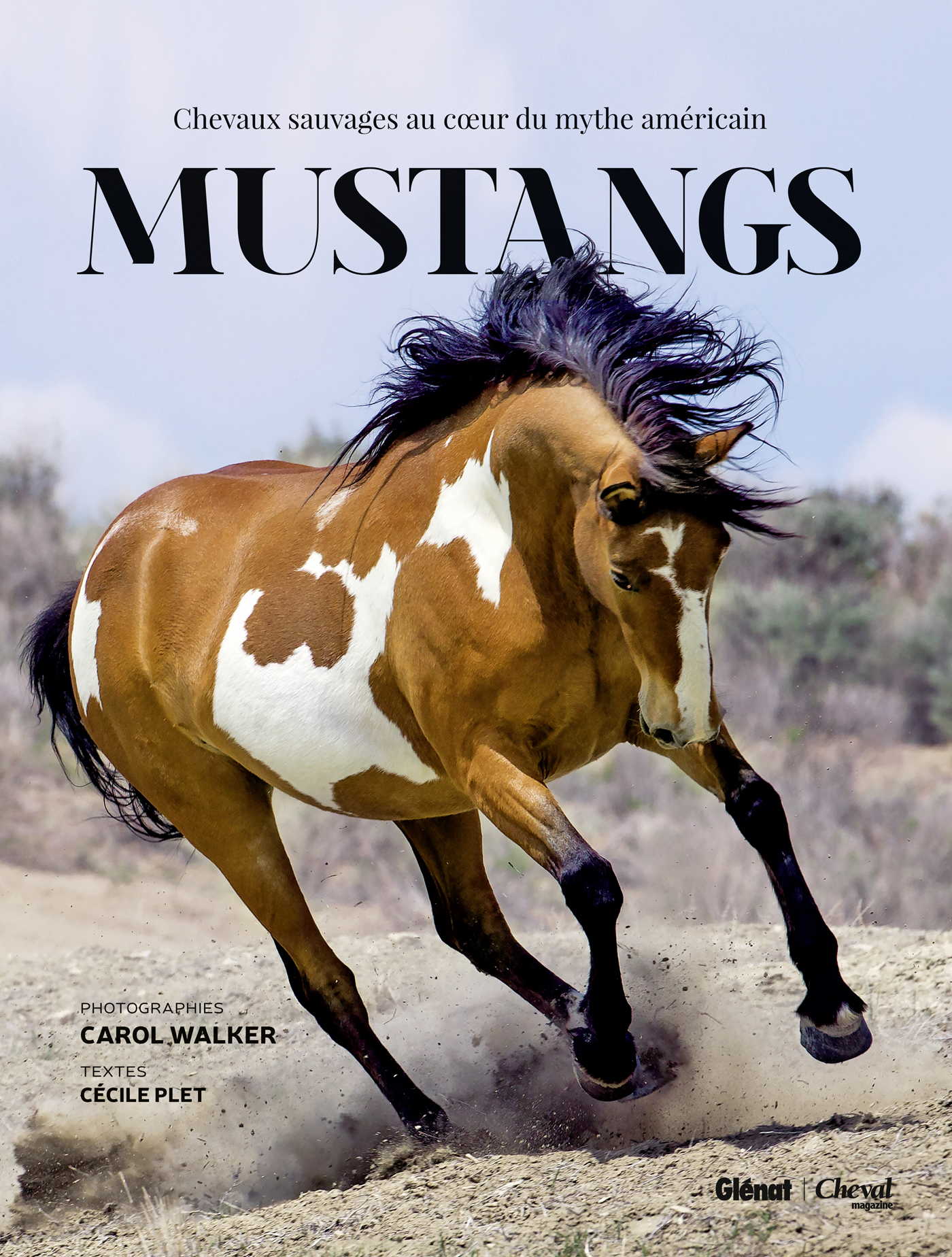 Wild Horses Carol Walker S New Book Mustangs Released